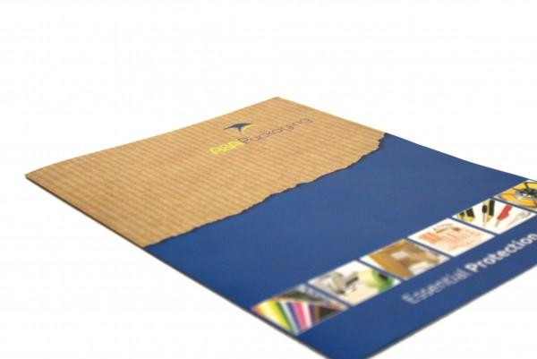 aa brochure